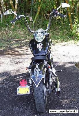 Honda Shadow Indian Larry Tribute