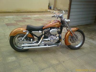 Article On Sportster Choppers