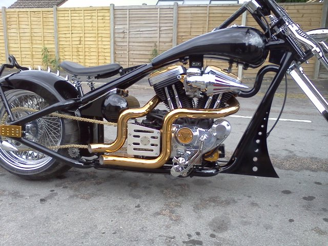 gold exhausts