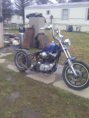 Hardtail Ironhead