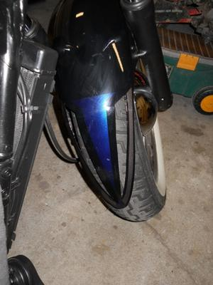 Ace front fender