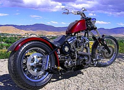 custom chopper swing arm