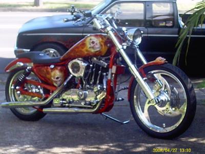 custom sportster
